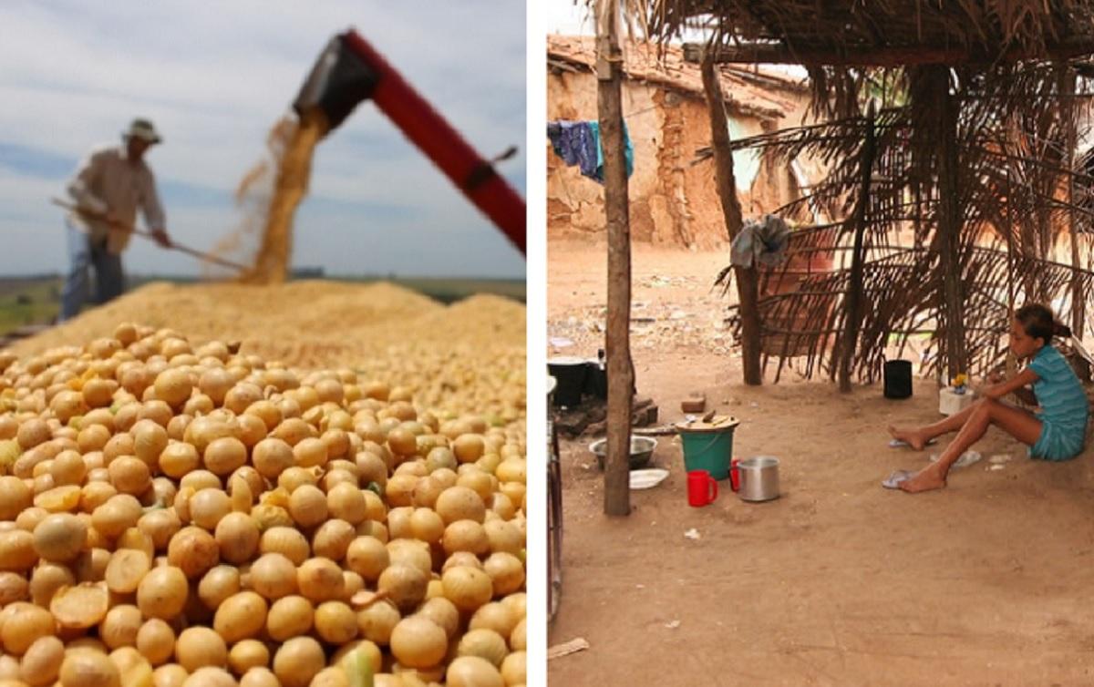Por que milhões de brasileiros passam fome se o país colhe safras recordes?